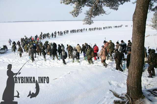 рыбалка в глебово ярославской области отчет 2016